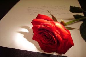 Ele-escreveu-10.000-cartas-para-sua-amada