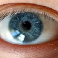 No Dia Mundial da Visão saiba algumas dicas para manter a saúde dos olhos