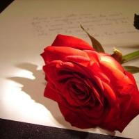 Ele escreveu 10.000 cartas para sua amada