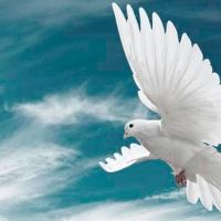 Não temer as surpresas do Espírito Santo
